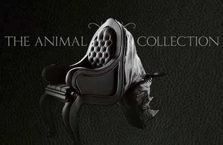 The Animal Chair collection